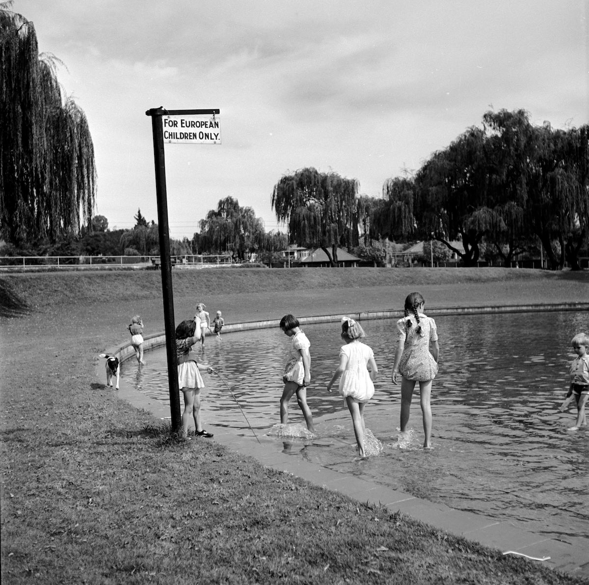 1956, White Children Paddling In A Pond Marked By A Sign Reading U201cFor  European Children Only. South Africa